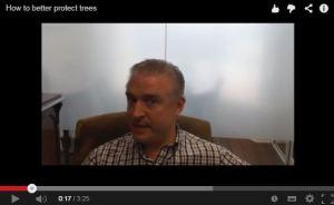 tree valuation video